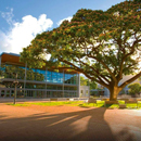 UH Mānoa again ranks among world's best universities