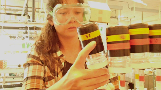 Female student doing research in lab
