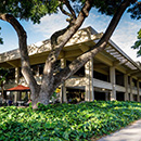 UH law school earns top rankings for 2020