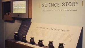 Jars of Cleopatra on exhibit