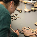 Award-winning forensics course continues to prove popular