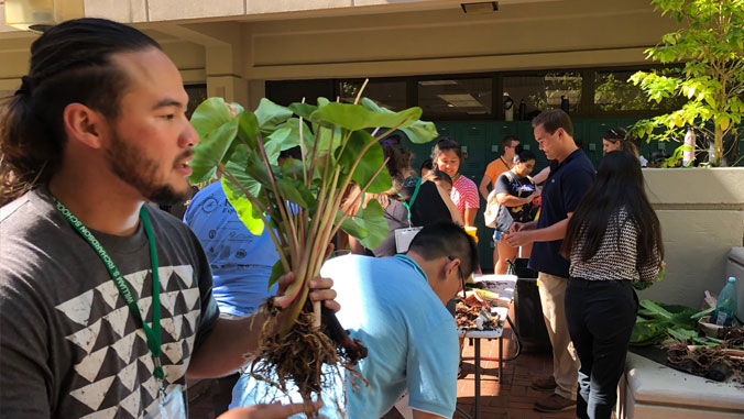 Student holding taro plant in law school courtyard