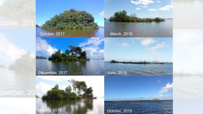 Time-lapse photos of invasive mangrove island
