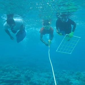 UH Hilo trains budding Marshallese marine scientists