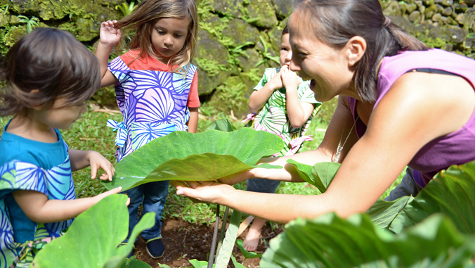 children and adult looking at taro leaf