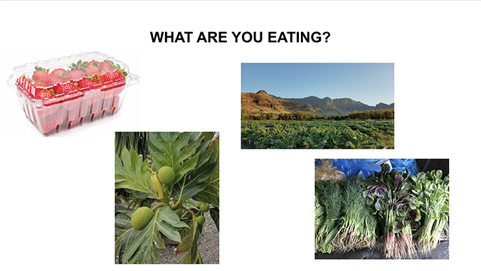 """Images of food with the text """"What are you eating?"""""""