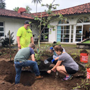 New trees, sustainability certificate at Windward CC