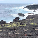 UH Hilo coastal erosion research shared through national toolkit
