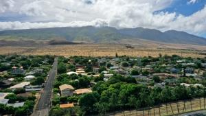 rural Hawaii neighborhood