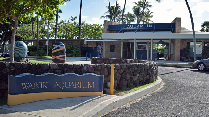 the front of the Waikiki Aquarium