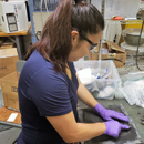 NASA undergrad internships provide research opportunities