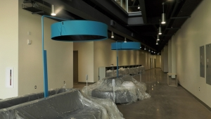 new hallway in life sciences building