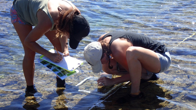 people collecting data in tidepool