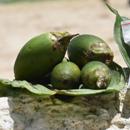 Instagrammed betel nut practices hint at relevant cessation strategies
