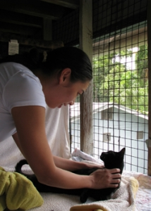 student preparing a cat for vaccination