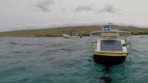 Island buoy buoy