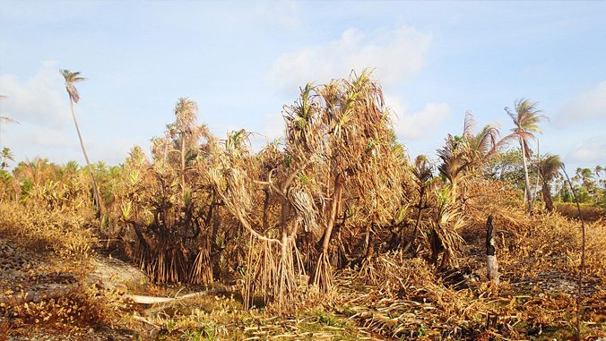 drought in Marshall Islands