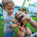 Keiki agriculture grows with homeschool lessons