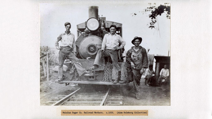old photo of sugar cane workers