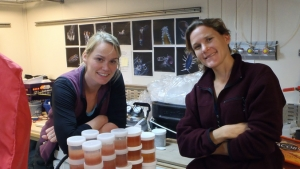 two women collecting samples