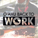 UH Community Colleges launch free training initiative to get O'ahu Back to Work
