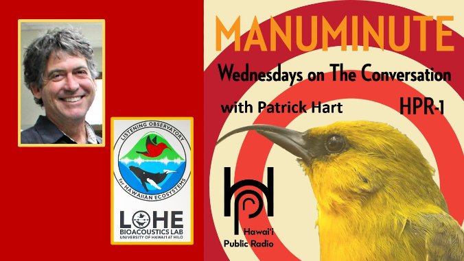 Patrick Hart Manu Minute banner