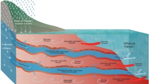 Conceptual model of freshwater path from rainfall to offshore