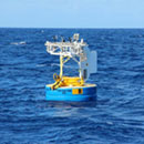 Murky ocean impacts from COVID-19 emissions reductions