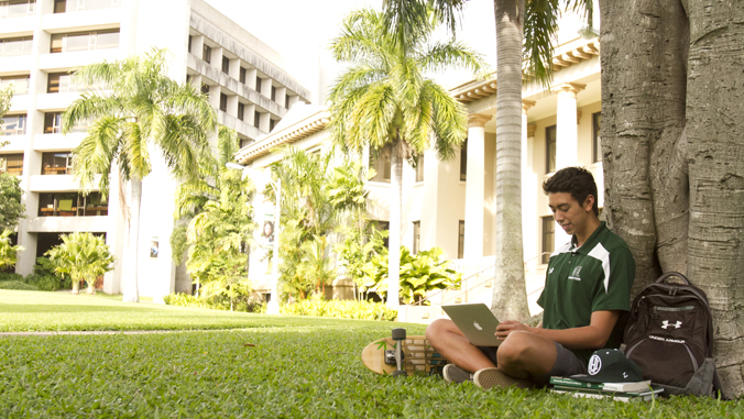 man sitting next to a tree looking at a laptop computer