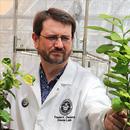Biochemist wins NSF CAREER Award for 3D plant metabolism research
