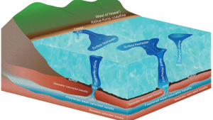 Conceptual illustration showing freshwater plumes at sea