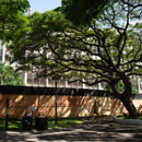 Snyder Hall to be razed, UH Mānoa improvement plans proceed