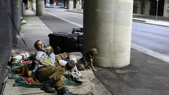 man sitting on ground next to street with dogs