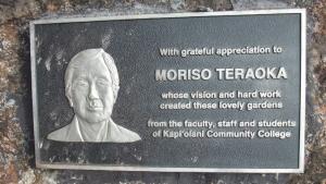 Teraoka plaque