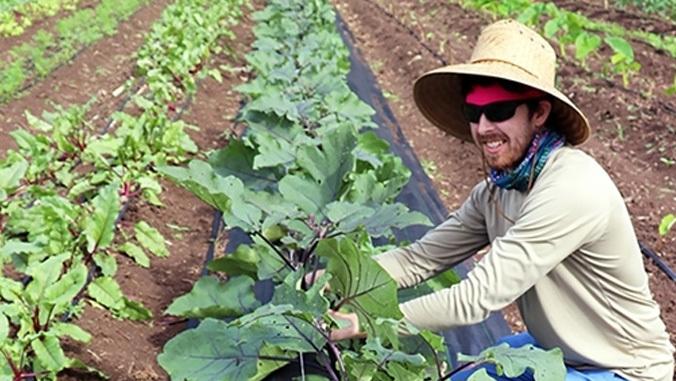 go farm hawaii