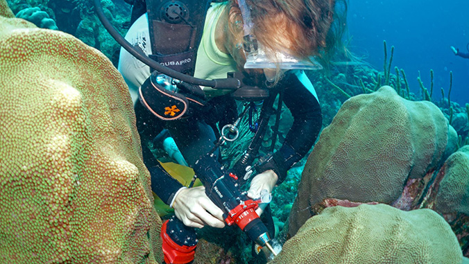 researcher collecting sample