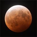 IfA's Super Blood Moon broadcast nets gazers world wide