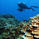 UH earns lead for up to $210M NOAA marine, atmospheric research institute