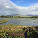 Sustainable water withdrawal from main Oʻahu aquifer may decrease