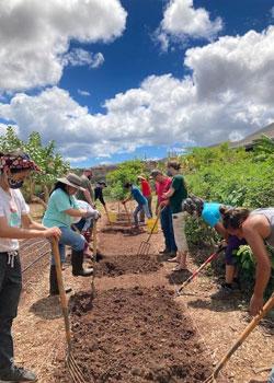 Students digging