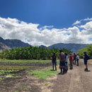 $300K from USDA to train teachers in sustainable ag, food systems