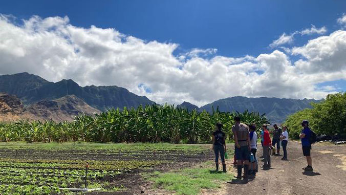 Students on a farm