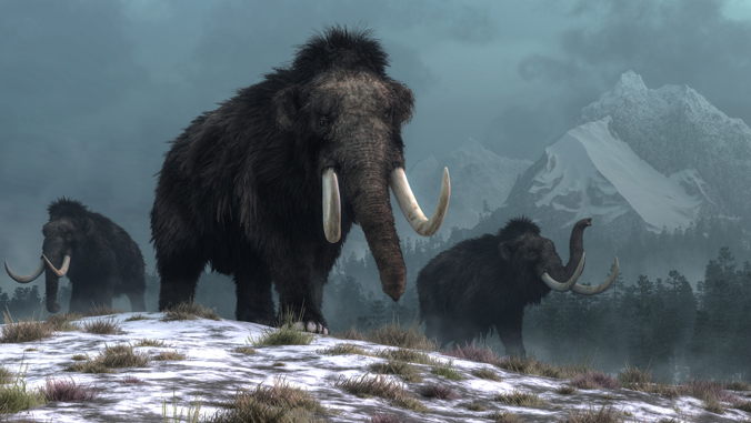 Frozen DNA shows climate change drove species extinction in the Arctic