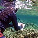 Innovative technologies advance marine health solutions