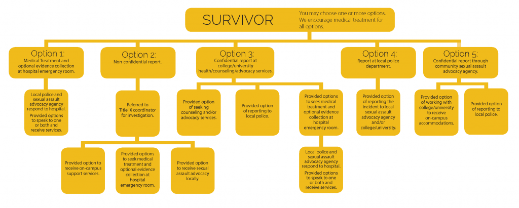 Survivor options infographic